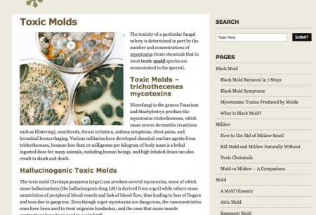 home page of black mold website